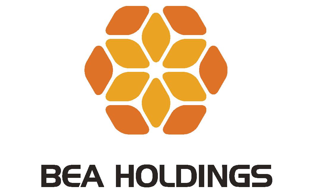 Bea Holdings